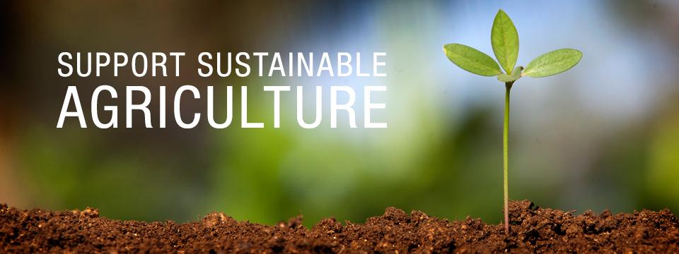 Моніторинг і пом'якшення наслідків парникових газів  від ведення сільського та лісового господарства (ПГ)